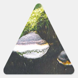 De Paddestoelen van Saturn Driehoekige Stickers