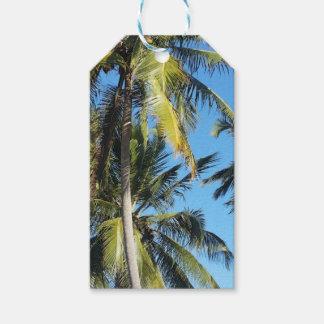 De palmen van Maragogi Cadeaulabel