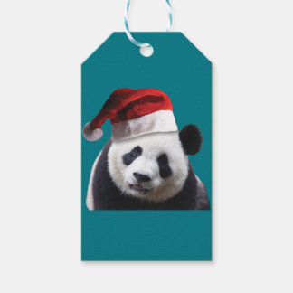 De Panda van Kerstmis draagt Cadeaulabel