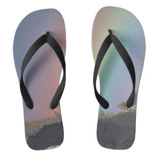 De Pantoffels van de regenboog Teenslippers