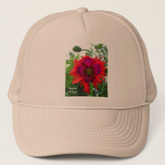 De papaver van Phoenix Trucker Pet