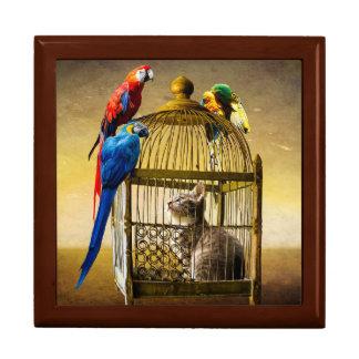 De papegaai Gevangen Doos van de Gift van de Kat Decoratiedoosje