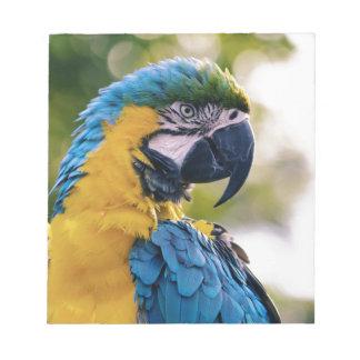 De papegaai notitieblok