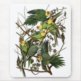 De Parkieten van Carolina van Audubon Muismatten