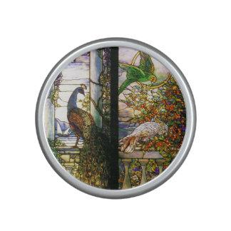 De Pauw van het Gebrandschilderd glas van Tiffany Speaker