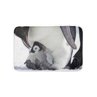 De Pinguïn van de keizer bij het Eiland van de Badmat