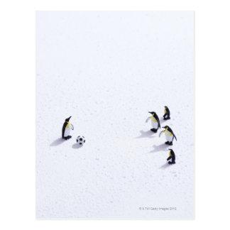 De pinguïnen die voetbal spelen briefkaart