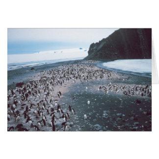 De Pinguïnen van Adelie Kaart