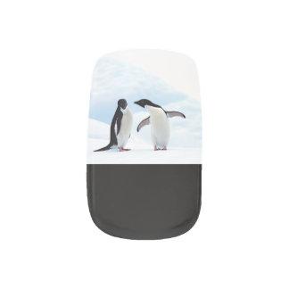De Pinguïnen van Adelie Nagelfolie