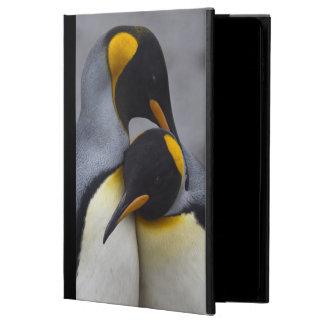 De Pinguïnen van de koning in het Hoesje van de