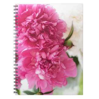 De pioen bloeit de Schets van het Close-up Notitieboek