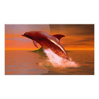 De Planeet van de dolfijn Fotoafdruk