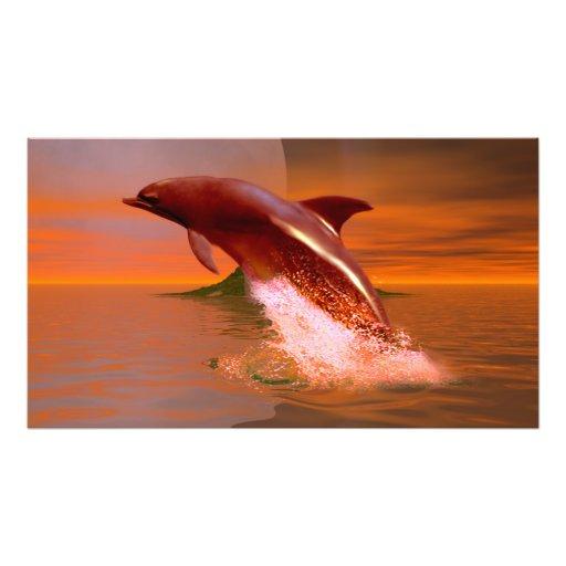 De Planeet van de dolfijn Fotografische Afdruk