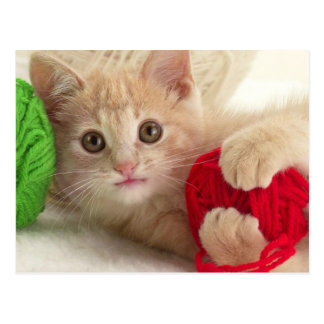 De pluizige Spelen van het Katje met Ballen van Briefkaart