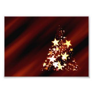 De Poinsettia van de Kerstboom van Kerstmis van de Fotoafdrukken
