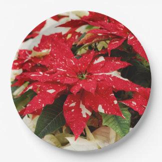 De Poinsettia van de Verrassing van de flikkering Papieren Bordjes