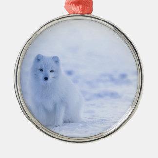 De poolvos van IJsland Zilverkleurig Rond Ornament