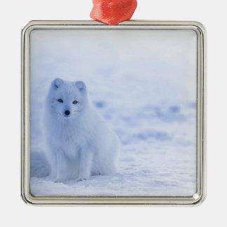 De poolvos van IJsland Zilverkleurig Vierkant Ornament