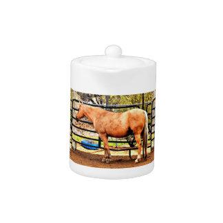 De Pot van de Thee van het Paard van Palomino