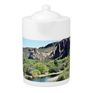 De Pot van de Thee van Saguaro van het meer