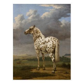 """De Pottenbakker van Paulus - het """"Gevlekte"""" Paard. Briefkaart"""