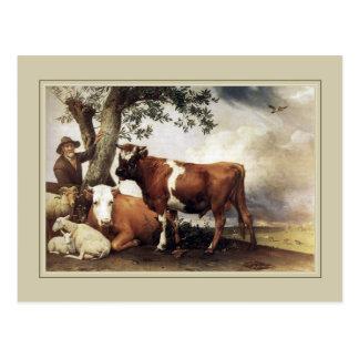 """De Pottenbakker van Paulus, """"Jonge Stier"""" 1647 Briefkaart"""