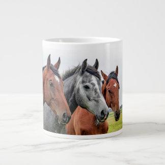 De prachtige Fotografie van de Hengst van Paarden Grote Koffiekop