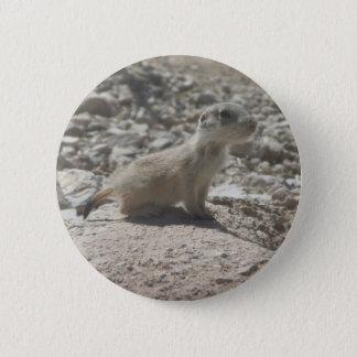 De Prairiehond van het baby Ronde Button 5,7 Cm