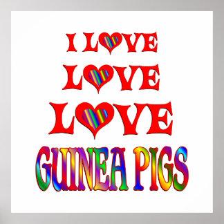 De Proefkonijnen van de Liefde van de liefde Poster