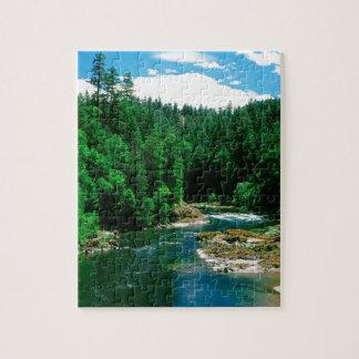 De Provincie Oregon van Umpqua Douglas van de rivi Legpuzzel