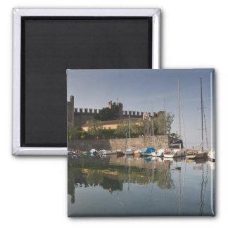 De Provincie van Italië, Verona, Torri del Benaco. Magneet