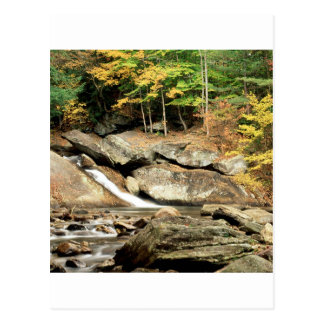 De Provincie Vermont van Windham van de Herfsten Briefkaart