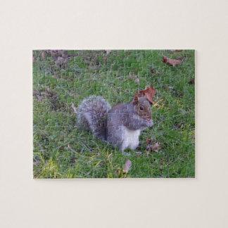 De Puzzel van de eekhoorn Legpuzzel