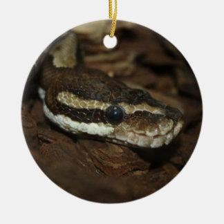 De python van het tapijt rond keramisch ornament