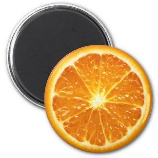 De Reeks van de Magneet van het fruit -