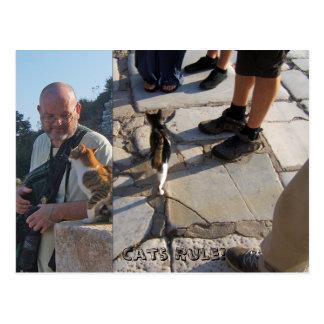 De Regel van de kat in Briefkaart Ephesus