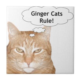 De Regel van de Katten van de gember Tegeltje