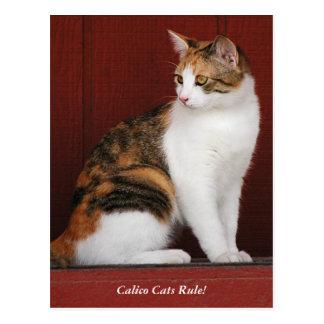 De Regel van de Katten van het calico! Briefkaart