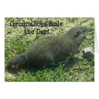 De Regel van Groundhogs de Dag - de Kaart van de