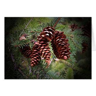 De Regeling van Pinecone van Kerstmis Briefkaarten 0