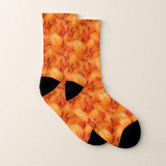 De regen-gekuste Oranje Aziatische Lelies van de Sokken