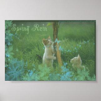 De Regen van de lente Poster