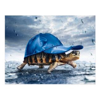 De regenachtige Schildpad van de Dag Briefkaart