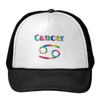 De Regenboog van kanker Pet Met Netje