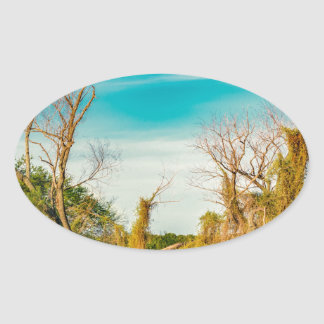 De Rivier van Parana, San Nicolas, Argentinië Ovale Sticker