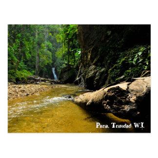 De Rivier van Paria en Waterval, Trinidad W.I. Briefkaart