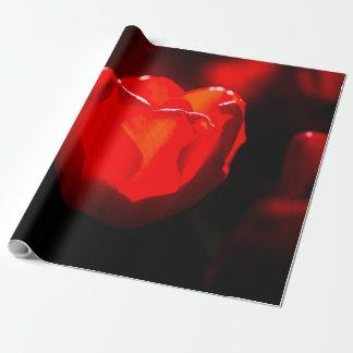 De rode Bloem van de Tulp - Brand Cadeaupapier