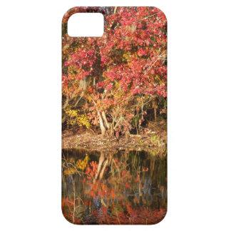 De rode Boom bij Zonsondergang Barely There iPhone 5 Hoesje