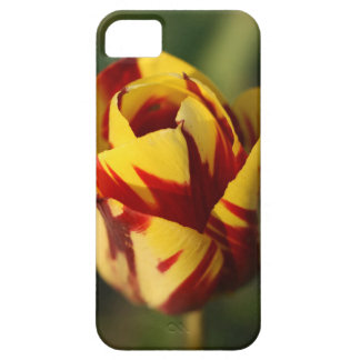 De rode en Gele Bloem van de Tulp Barely There iPhone 5 Hoesje