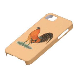 De Rode Haan van de Gember van de kemphaan Barely There iPhone 5 Hoesje